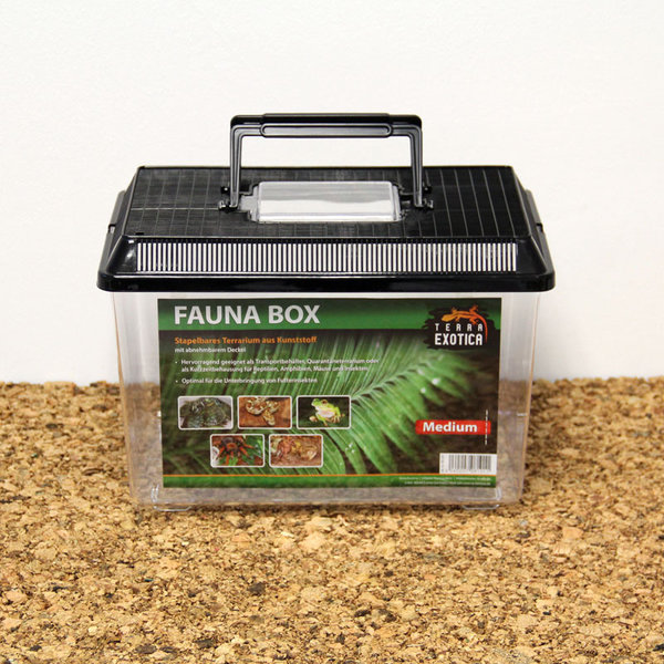 Fauna Box - medium 30 x 20 x 20 cm