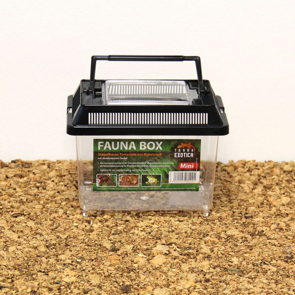 Fauna Box - mini 18 x 11 x 14 cm